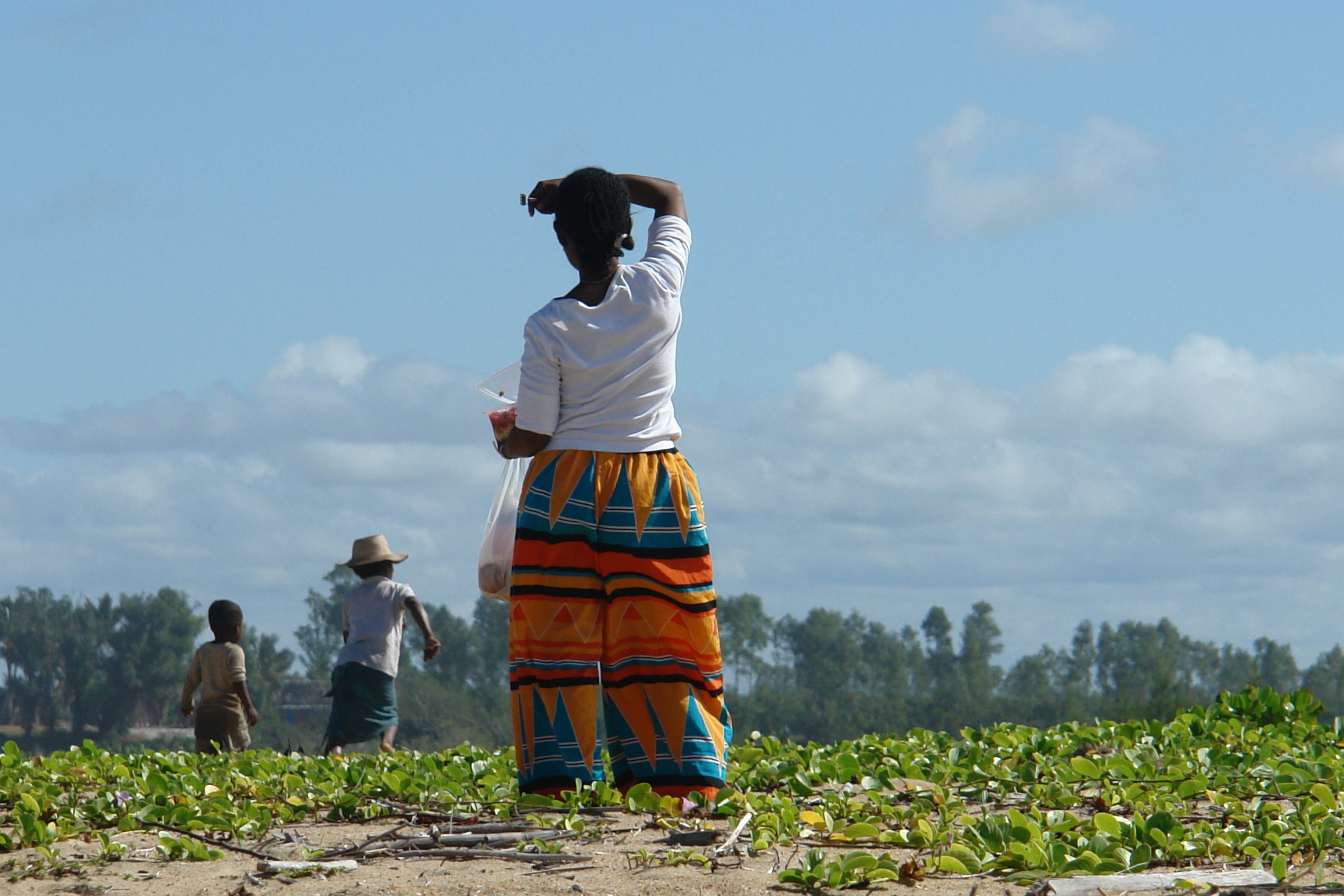 """""""Ancient breed of domestic rice traced to the Inner Niger Delta"""", West Africa"""
